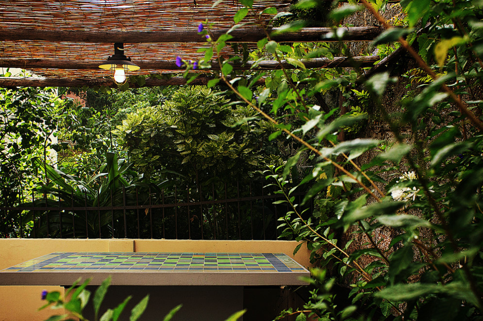 giardino regalato-carraro2